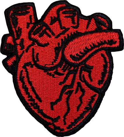 Amazon.com: X-Ray Anatomical Heart Embroidered Badge Iron On Sew On ...