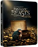 Animali Fantastici e Dove Trovarli (Steelbook - Esclusiva Amazon) (Blu-Ray)