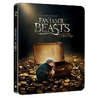 Animali Fantastici e Dove Trovarli (Steelbook - Esclusiva Amazon)