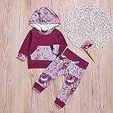 Infant Toddler Baby Girl Sweatshirt Floral Hoodie