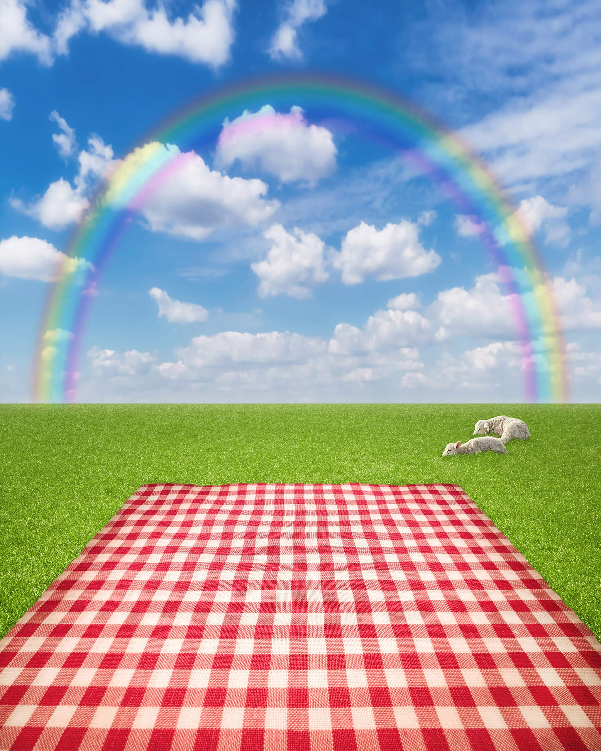 Rainbow Sky Backdrop Blue Sunny Sky red Grid Blanket Green Grass Ground Lawn with Sleeping Sheeps Spring Scene Scenic Printed Fabric Photography Background (G1426, 8' Wide by 10' Tall)