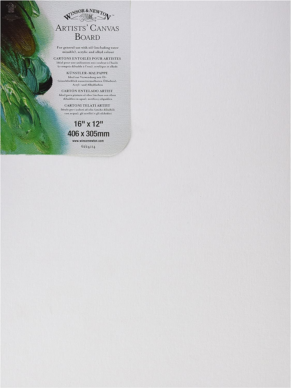 Winsor /& Newton 16x12 pouces Winsor Toile de peinture