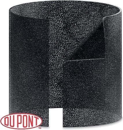Leitz Recambio de Capa de carbón Dupont para el purificador de ...