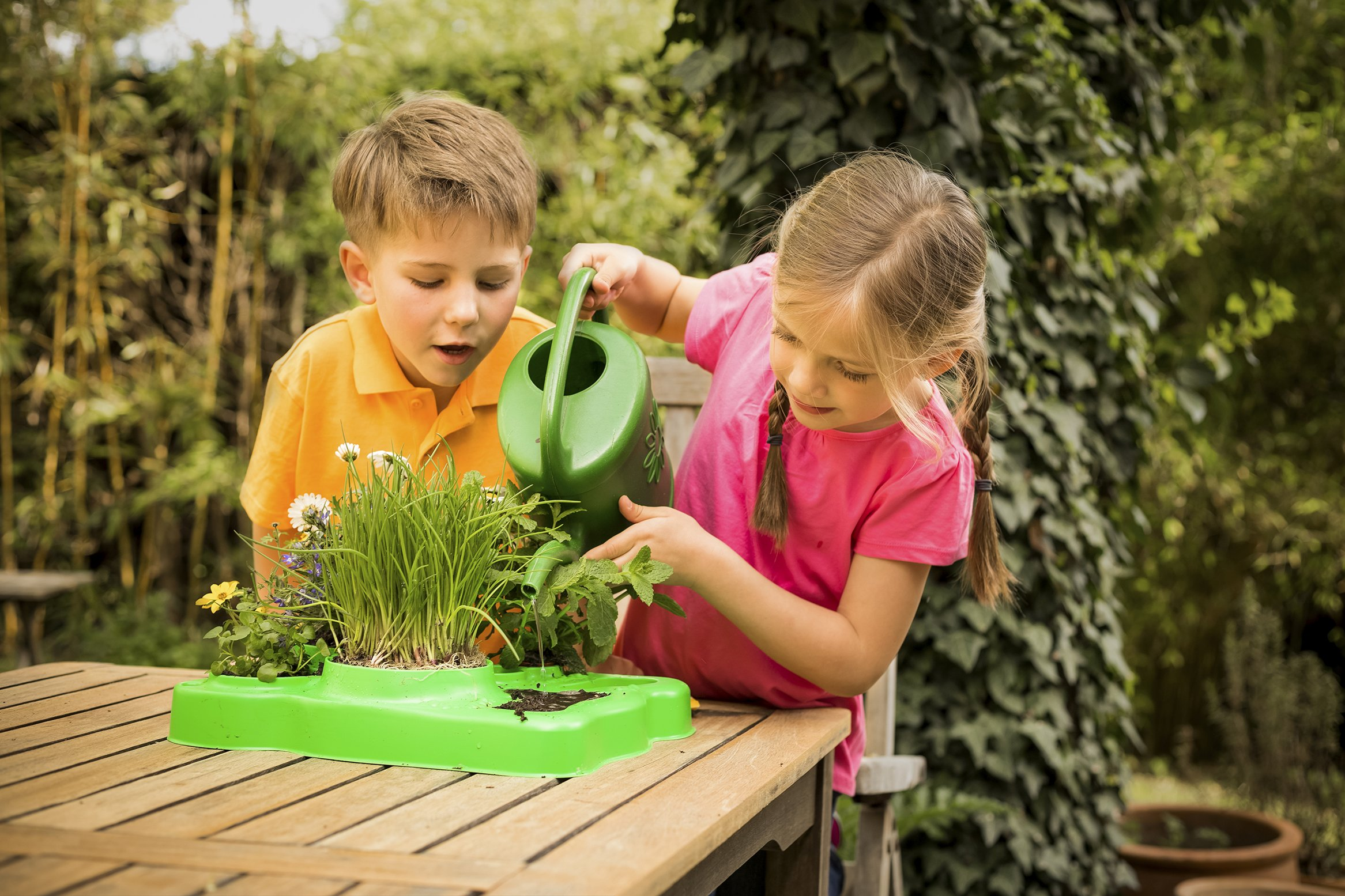 Kids First Botany - Experimental Greenhouse Kit by Kids First (Image #7)