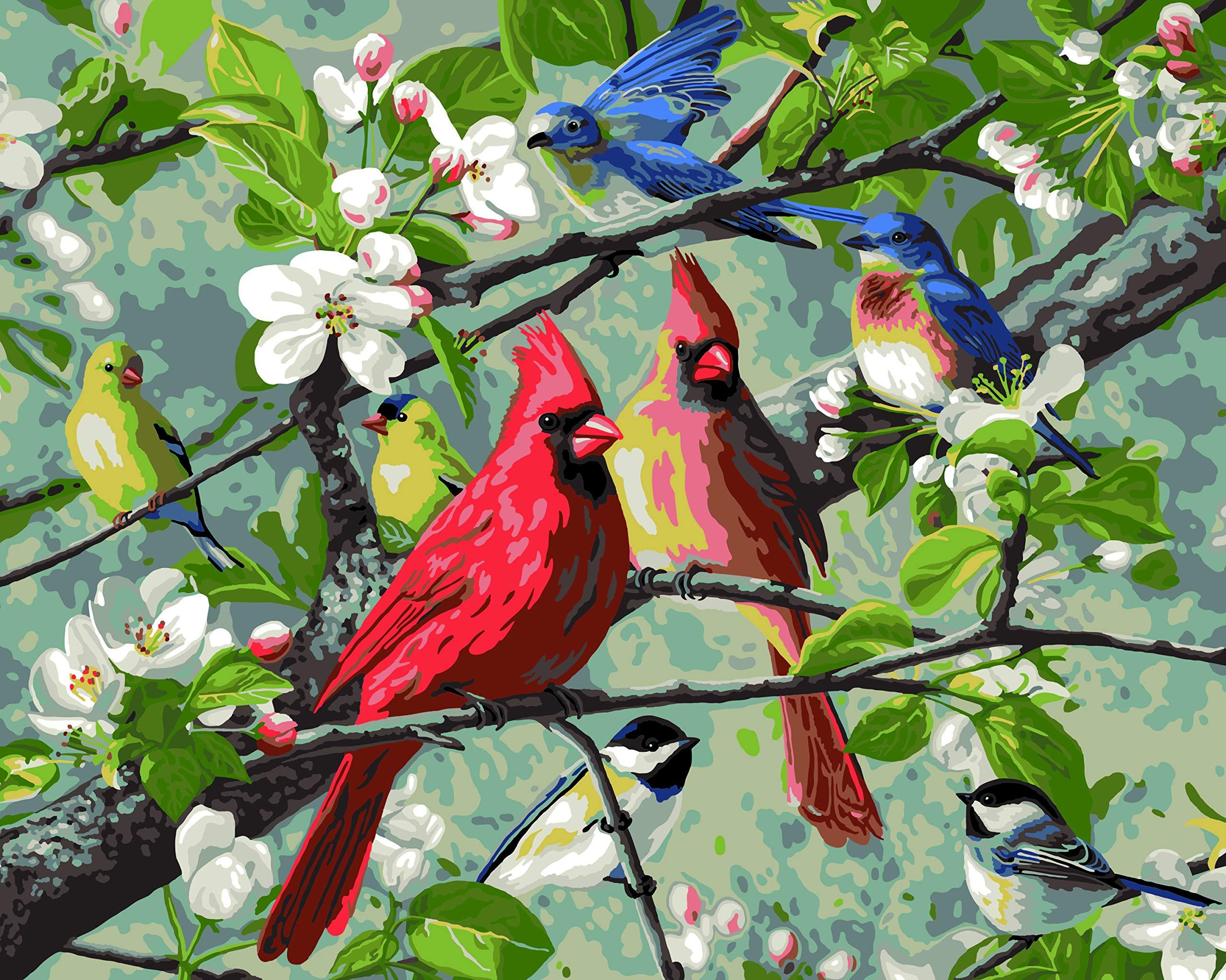 Plaid Enterprises, Inc. 22599 Songbirds Paint by Number Kit, Multicolor by Plaid Enterprises, Inc.