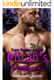 Micah's Promise (Delta Force Team Panther Book 4)