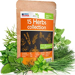 15 Culinary Herb Seeds Pack - Heirloom and Non GMO, Grown in USA - Indoor or Outdoor Garden - Basil, Parsley, Dill, Cilantro, Rosemary, Mint, Thyme, Oregano, Tarragon, Chives, Sage, Arugula & More