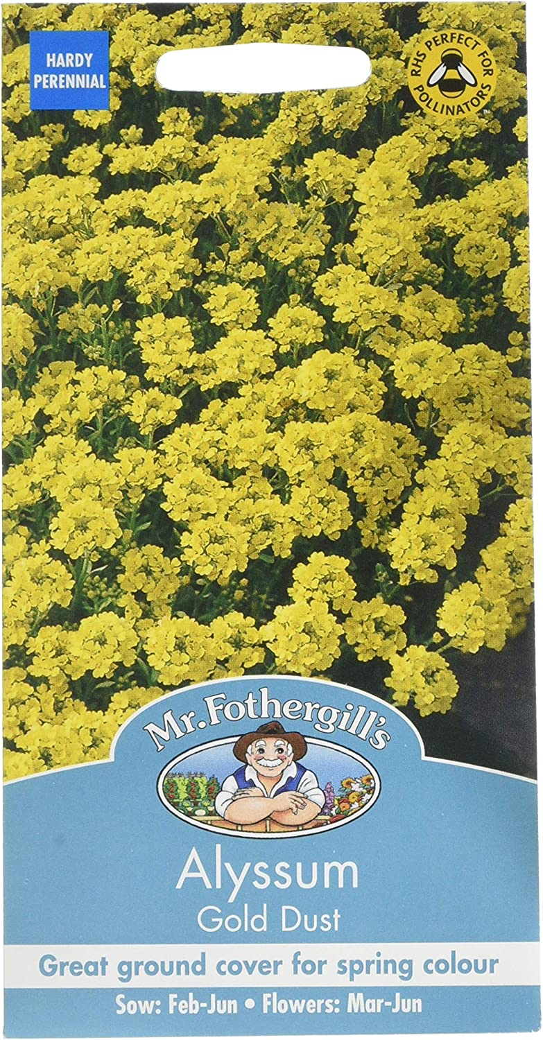 Alyssum Gold Dust Seeds by Johnsons Seeds FREE UK DELIVERY