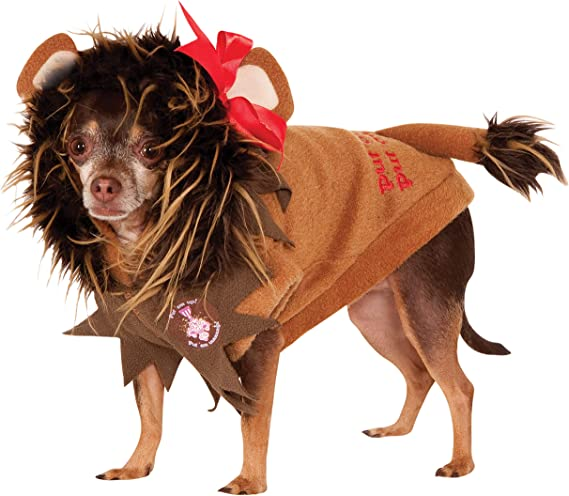 Witch Hat w//Hair Wicked Fancy Dress Up Halloween Pet Dog Cat Costume Accessory