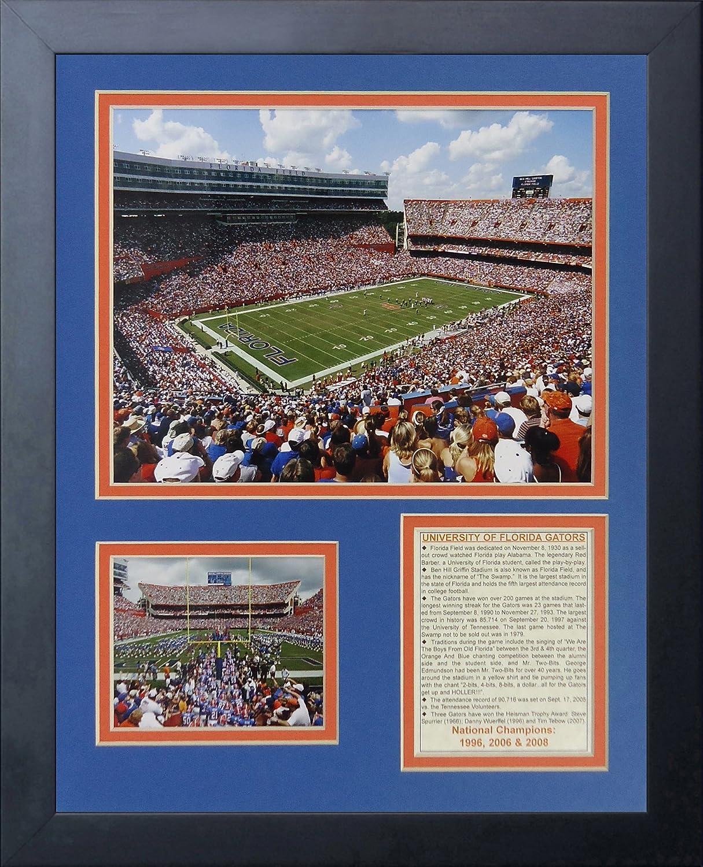 11 by 14-Inch Legends Never Die Florida Gators Ben Hill Griffin Stadium Framed Photo Collage