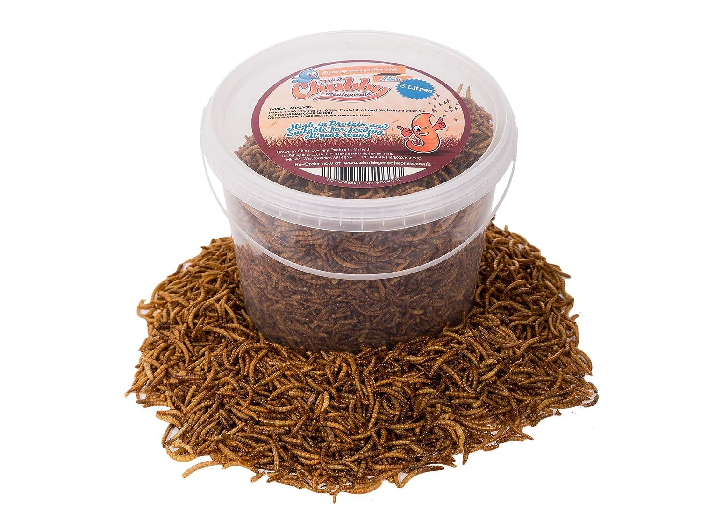 Vers de farine séchés par Chubby Mealworms - 3l CPP82033
