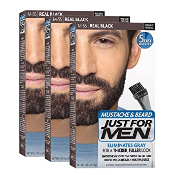 Amazon.com : Just For Men Mustache & Beard Brush-In Color Gel, Real ...