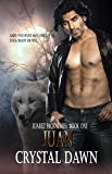 Juan (The Juarez Pack Book 1)