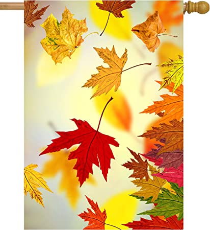 Amazon Com Shinesnow Autumn Golden Tree Maple Fall Falling Leaves Seasonal Scenery House Flag 28 X 40 Double Sided Polyester Welcome Yard Garden Flag Banners For Patio Lawn Home Outdoor Decor