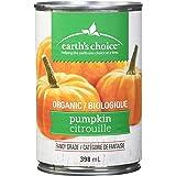 Earth's Choice Organic Pumpkin Puree, 398ml