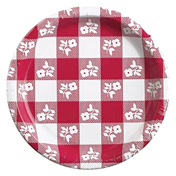 Red Gingham Paper Plates 24 ct  sc 1 st  Amazon.com & Amazon.com: Red Gingham Paper Plates 24 ct: Health \u0026 Personal Care