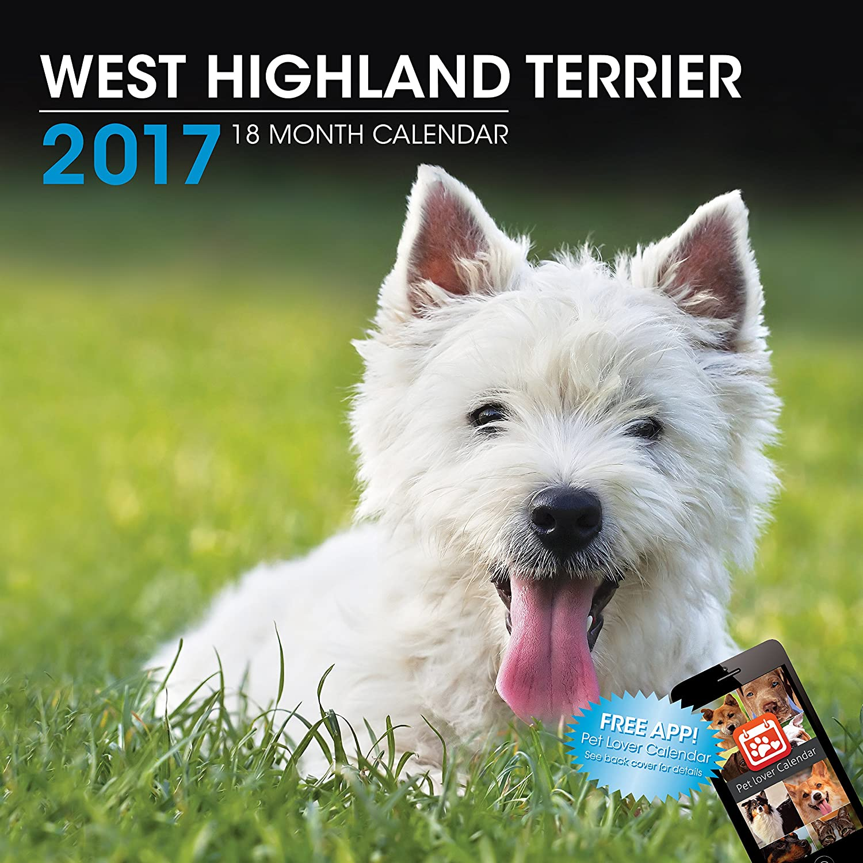 LittleGifts West Highland Terrier 2017 Calendar (3025)