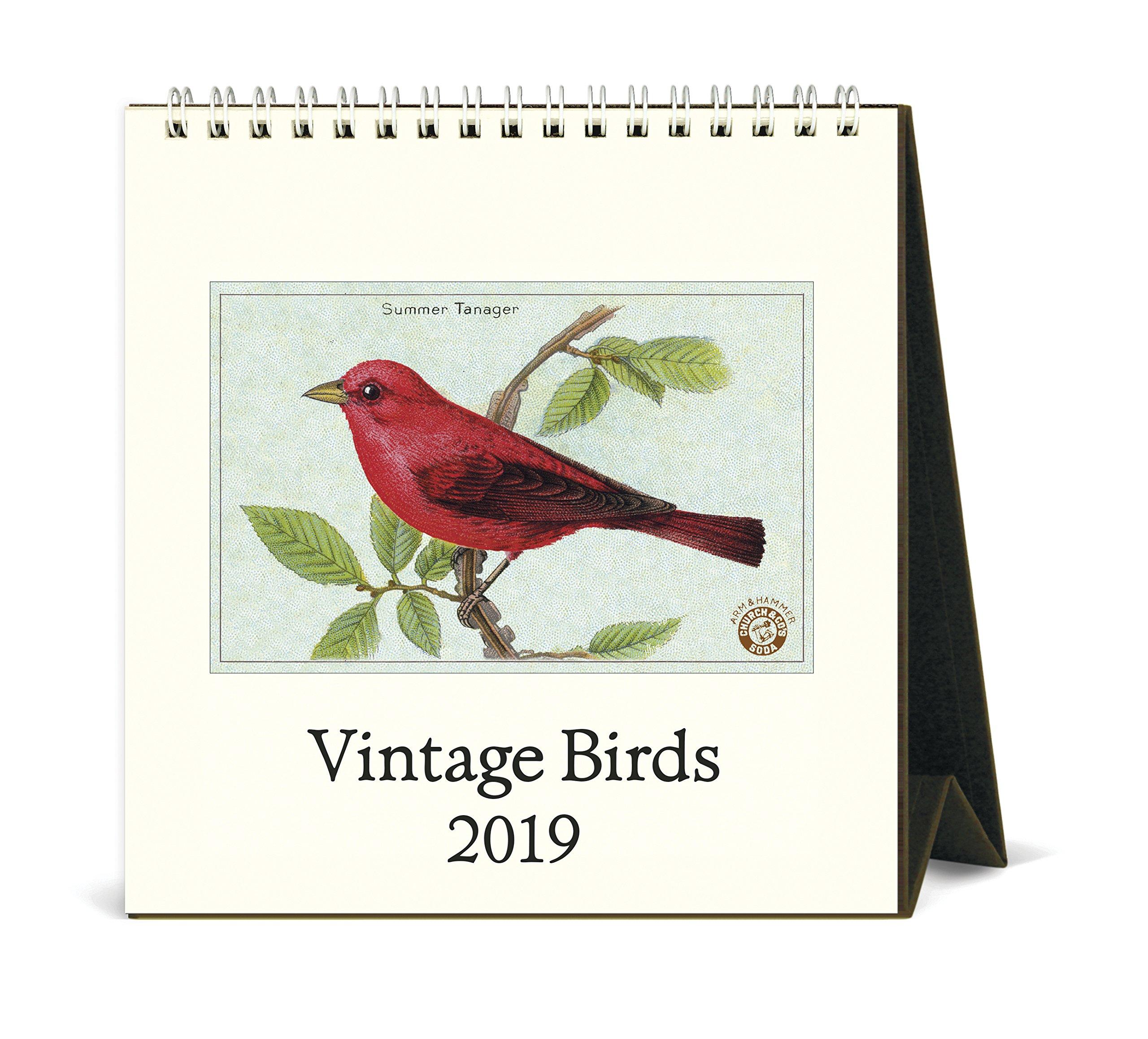 Cavallini Papers & Co. Vintage Birds 2019 Desk Calendar, Multicolor