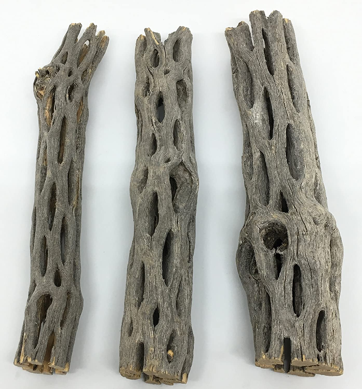 "Awesome Aquatic Natural Cholla/Choya Wood 3 Pieces 6"" for Shrimp Habitat and Food Treat Hermit Crabs Plecos Aquarium Decoration Lowers pH Hideouts and Chew Toys Reptiles Thorn Free Dried Organic"