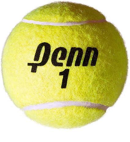 Amazon.com: Penn Jumbo 10 inch pelota hinchable de tenis ...