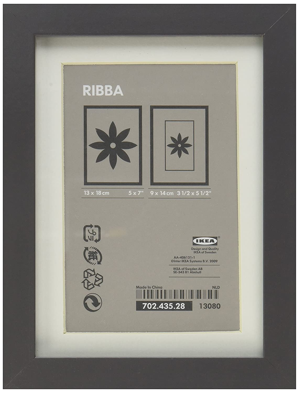 Amazon.com - Ikea RIBBA Frame, high gloss, gray - Single Frames