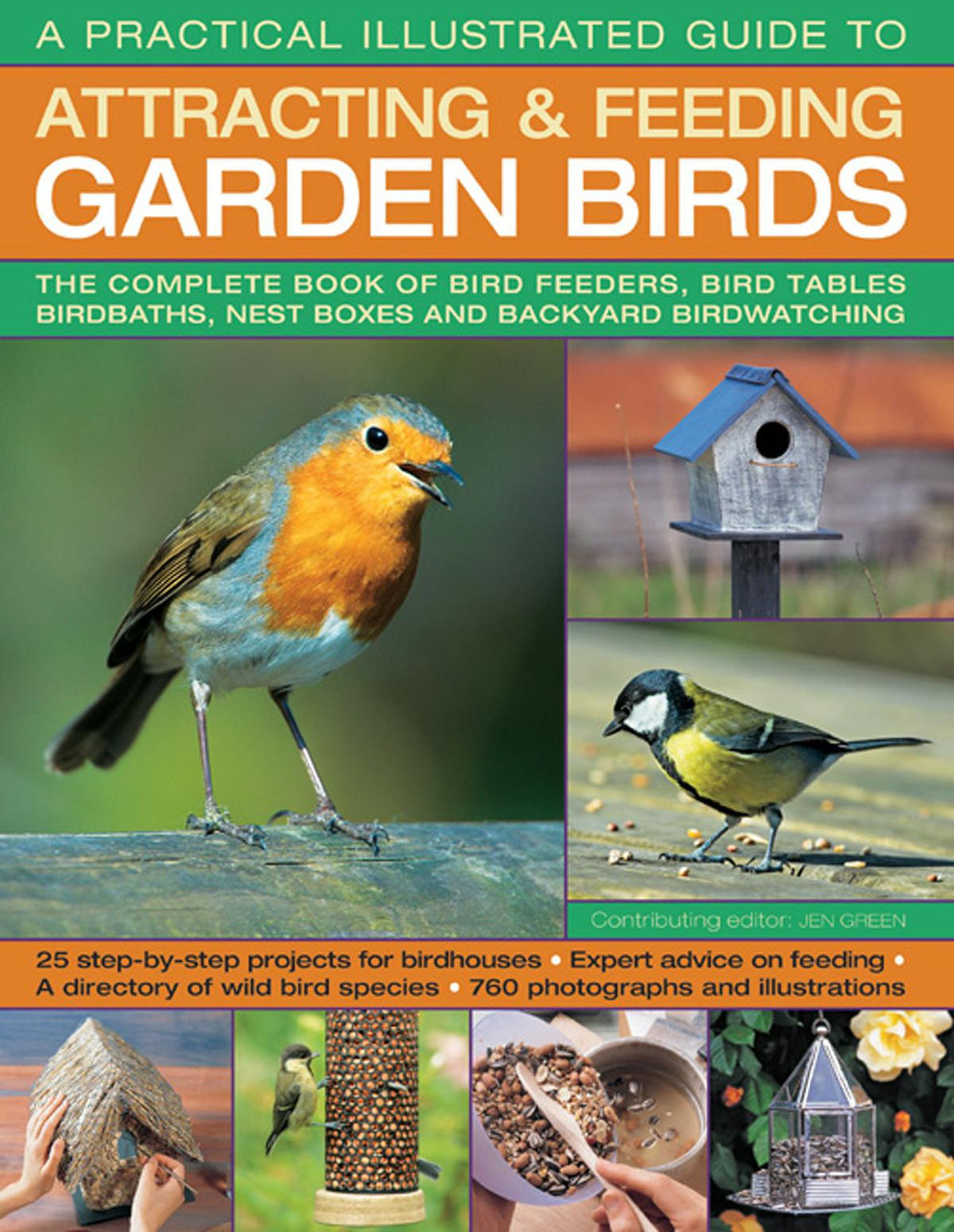 a practical illustrated guide to attracting u0026 feeding garden birds