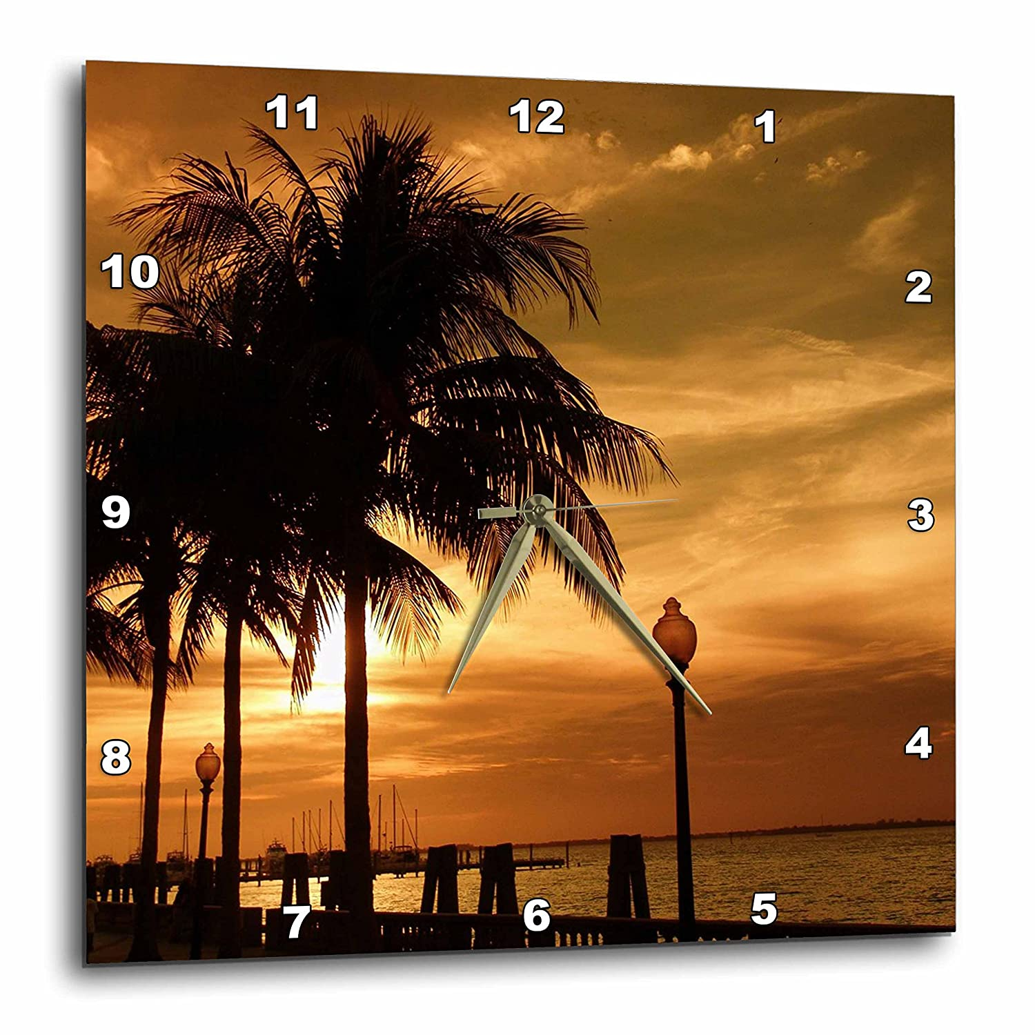 3dRose dpp/_16855/_1 Wall Clock Tropical Copper 10 by 10-Inch 3D Rose