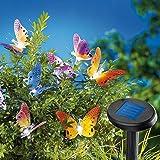 """Solarlichterkette """"Schmetterlinge"""""""