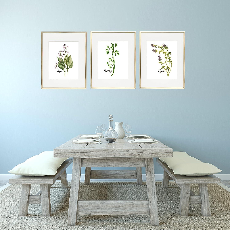 Amazon.com: Watercolor Herb Prints, Kitchen Herb Print, Kitchen ...