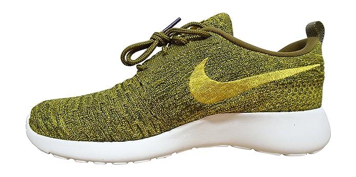 Nike 704927-306, Scarpe da Trail Running Donna, Verde (Olive Flak/Gold Lead Sequoia Sail), 42 EU