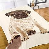 Dreamscene Luxe douce et chaude en fourrure de vison synthétique Chien carlin Canapé lit Couvre-lit, Naturel, 150x 200cm