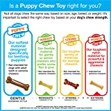 Nylabone Puppy Chew Chicken Dog Chew Toy for