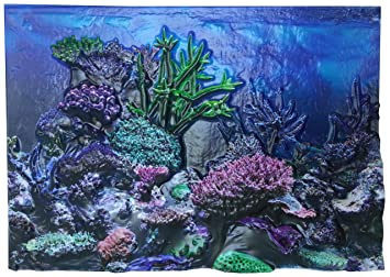 30cm-50cm Tall Aquarium Background Fish Tank Landscape Poster Double Sided  Picture Wall Decor NEW