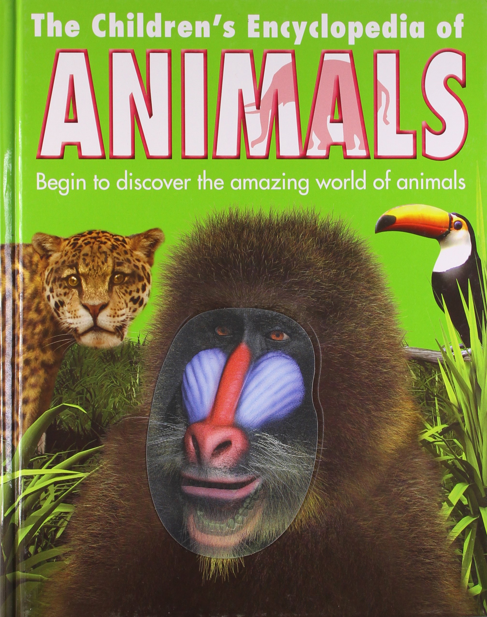 buy the children u0027s encyclopedia of animals book online at low
