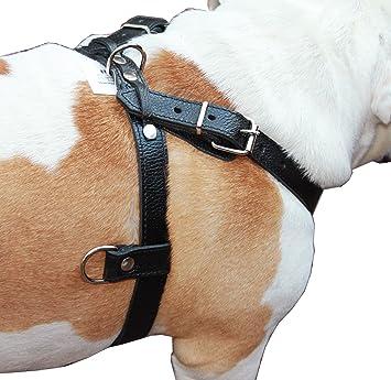 Alta calidad Auténtico Cuero Negro Perro Tirando Walking Arnés ...