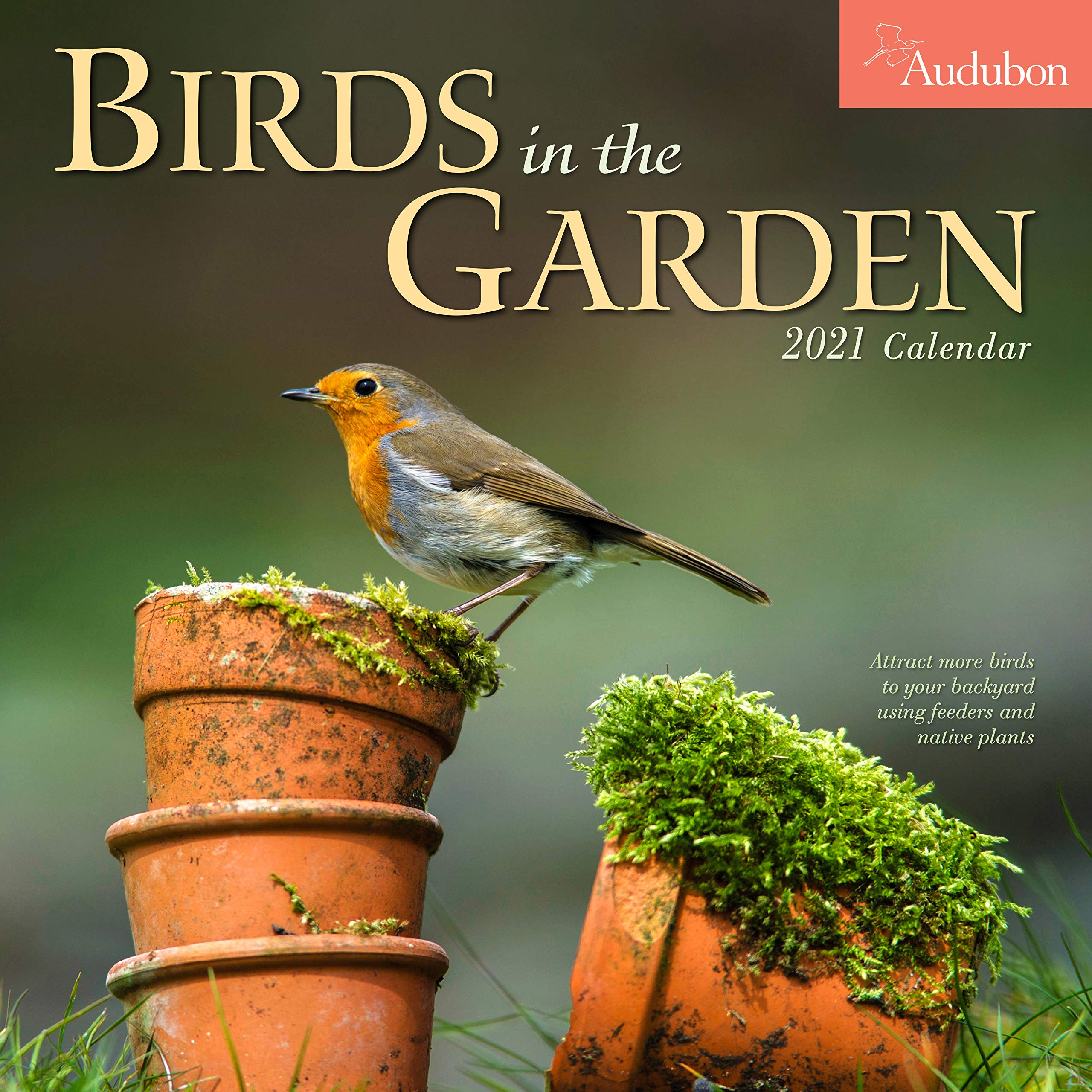 Amazon.com: Audubon Birds in the Garden Wall Calendar 2021