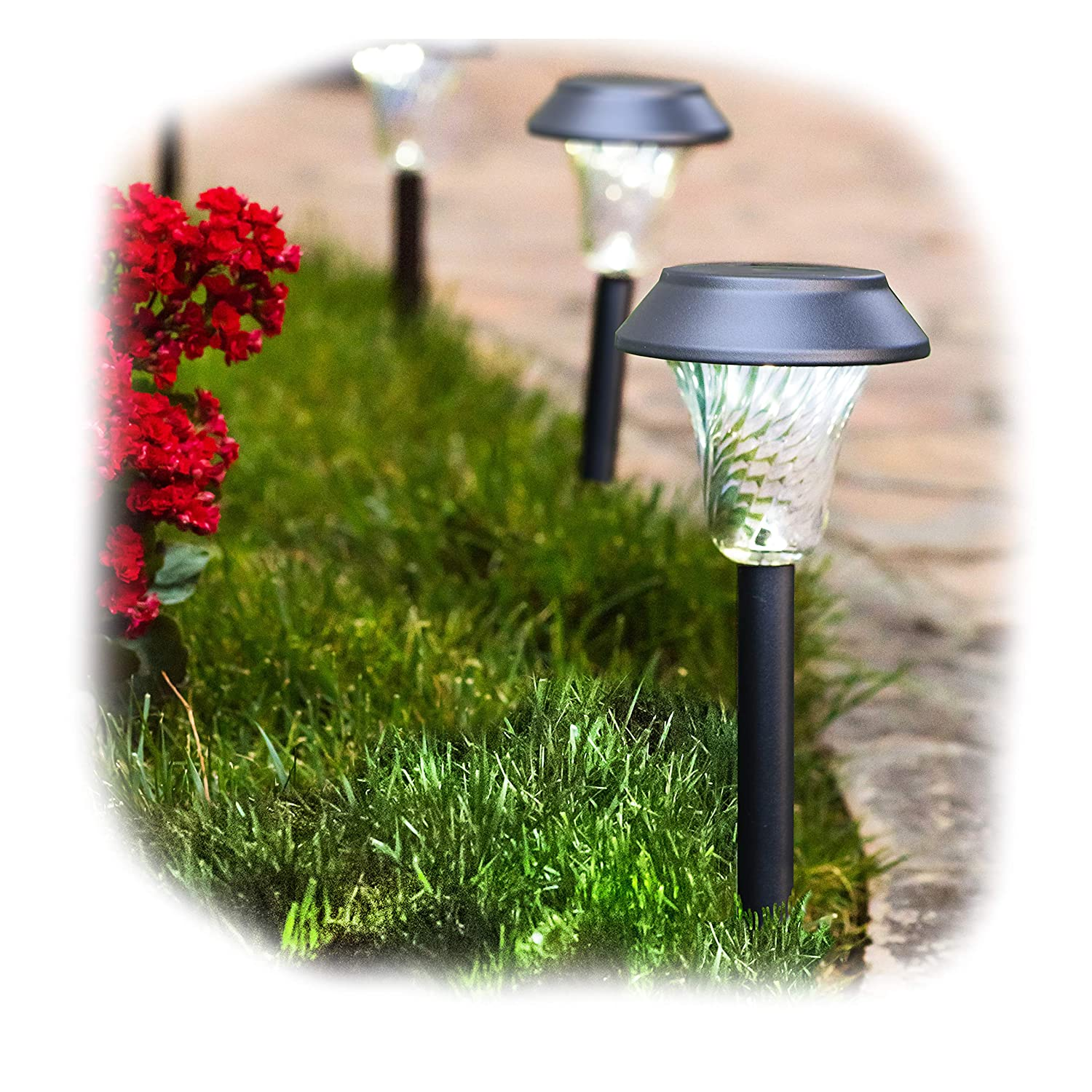 Enchanted Spaces Black Solar Path Light, Set of 6, with Glass Lens, Metal Ground Stake, and Extra-Bright LED