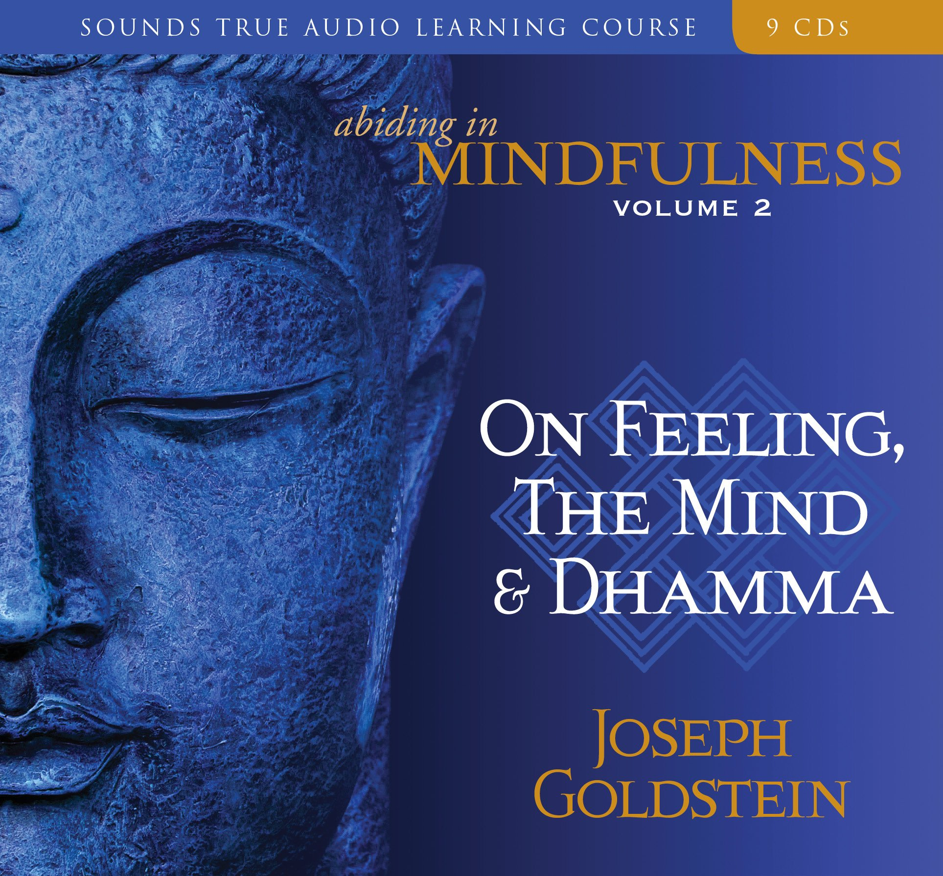 2: Abiding in Mindfulness: On Feeling, the Mind and Dhamma by Brand: Sounds True, Incorporated