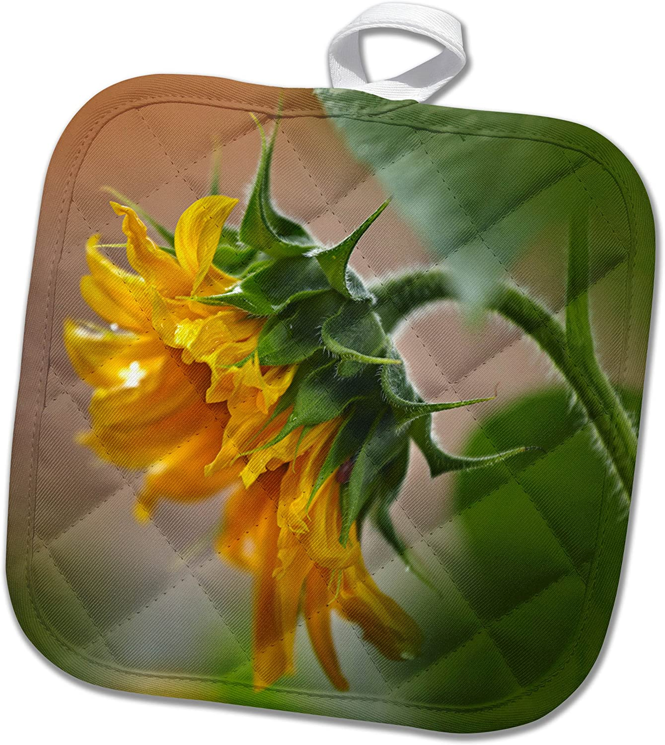 Amazon Com 3drose Pot Holder Profile Of A Sunflower California 8 By 8 Kitchen Dining