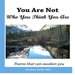 You Are Not Who You Think You Are: Poems That Can Awaken You