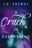A Crack in Everything (Cracks Book 1) (English Edition)