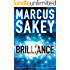 Brilliance (The Brilliance Trilogy Book 1)