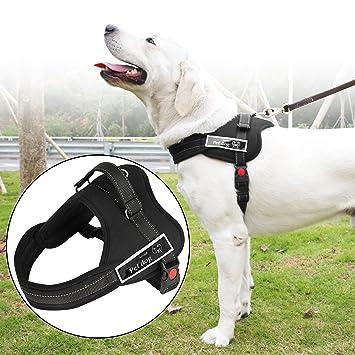 Arnés perro de alta robustez,Iyowin nueva suave cómoda acolchada ajustable mascota pecho del arnés para la formación o caminar (Negro, M): Amazon.es: ...