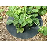 "Copper Impregnated Strawberry Mats - Keep Slugs & Snails away from plants. 11"" (27cm) Diameter (20)"