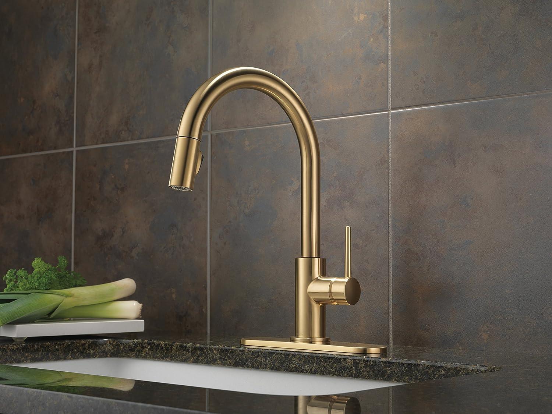 delta rp64070 trinsic 8 inch escutcheon chrome faucet