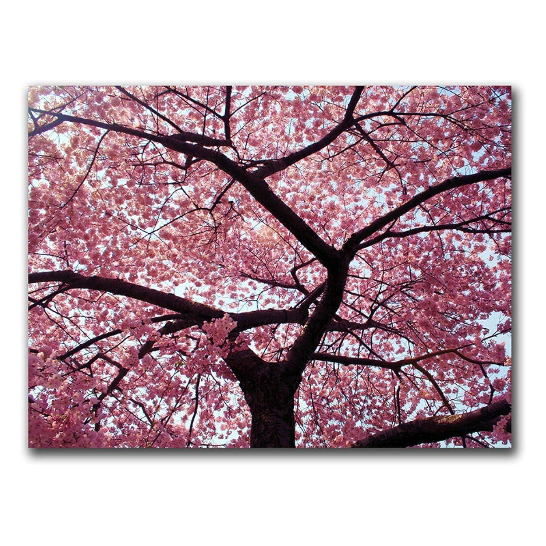 Cherry Tree by CATeyes 18x24-Inch Canvas Wall Art Trademark Fine Art MZ003-C1824GG