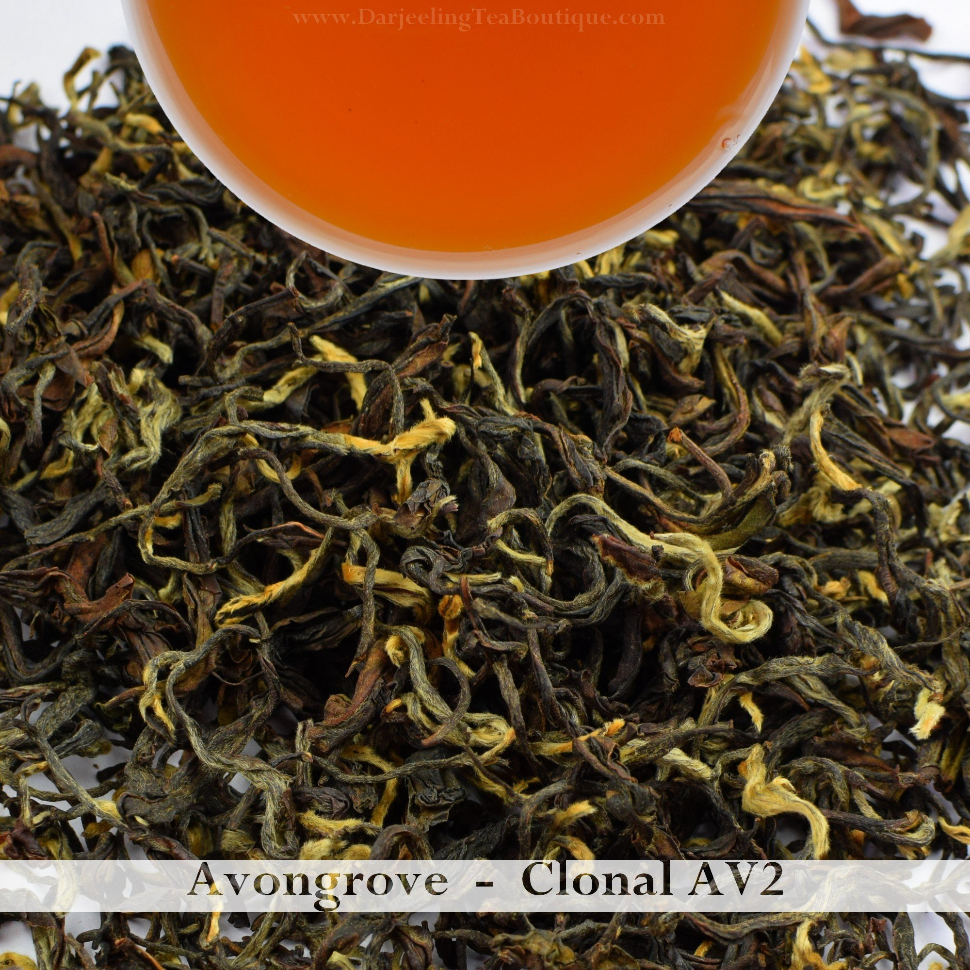 2017 AV2 Cultivar | Darjeeling 2nd Flush Tea | 500gm (17.63oz) | Pure Oragnic Tea from Avongrove | Bulk Wholesale Pack | Darjeeling Tea Boutique