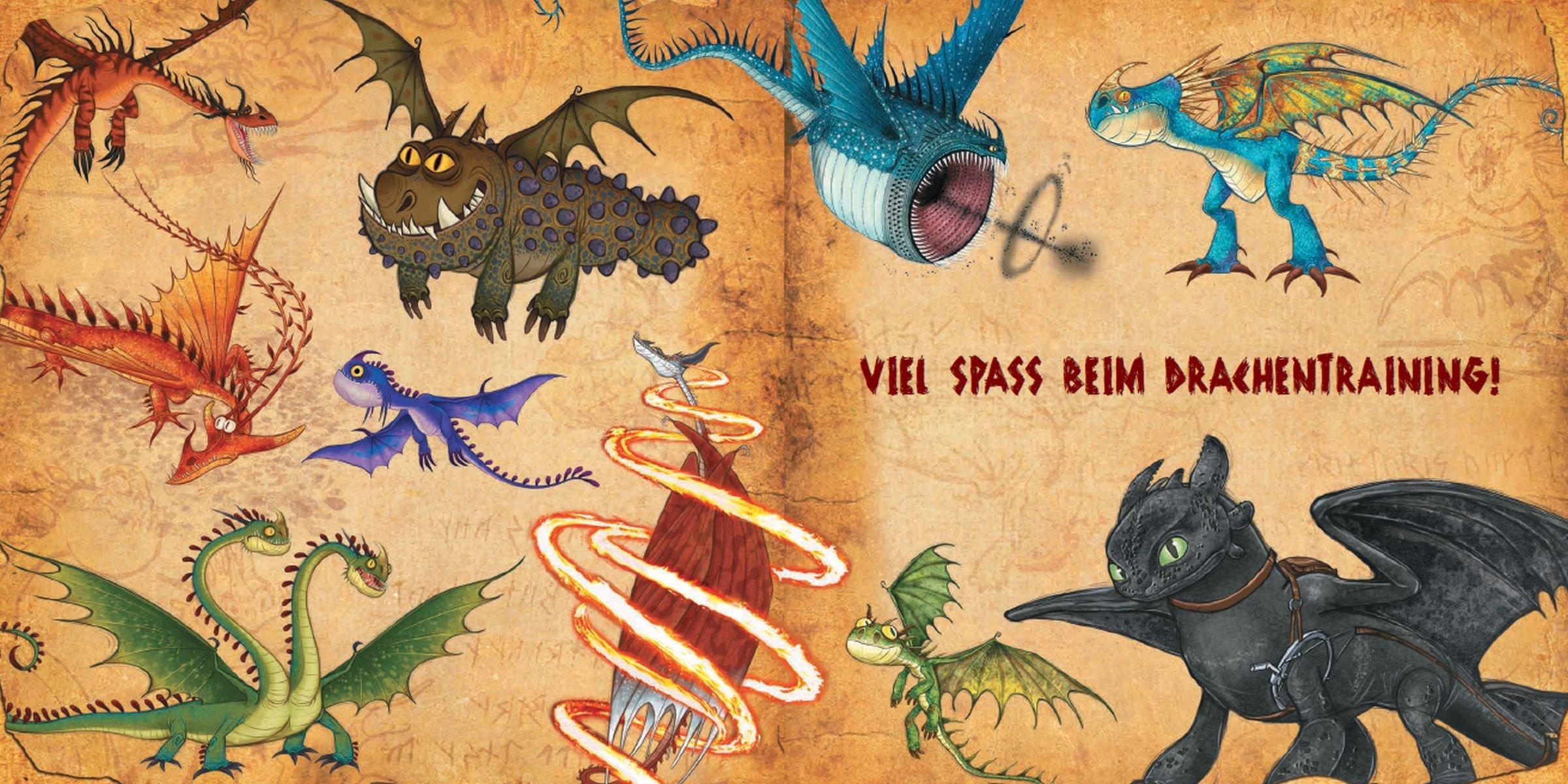 Gratis Ausmalbilder Drachen Zähmen Leicht Gemacht : Sch N Ausmalbilder Dragons Die Reiter Von Berk Kostenlos