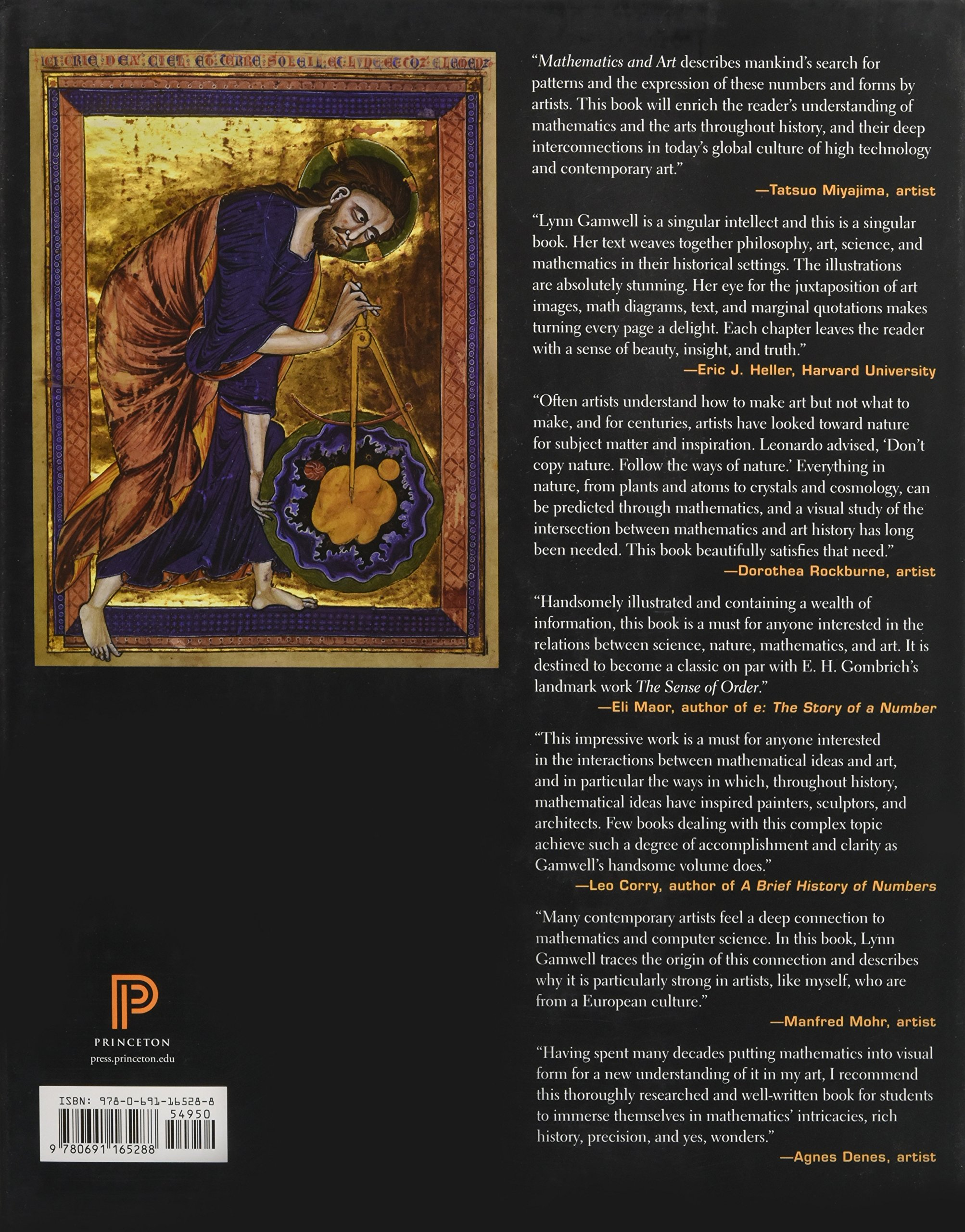 Mathematics And Art: A Cultural History: Lynn Gamwell, Neil Degrasse Tyson:  9780691165288: Amazon: Books