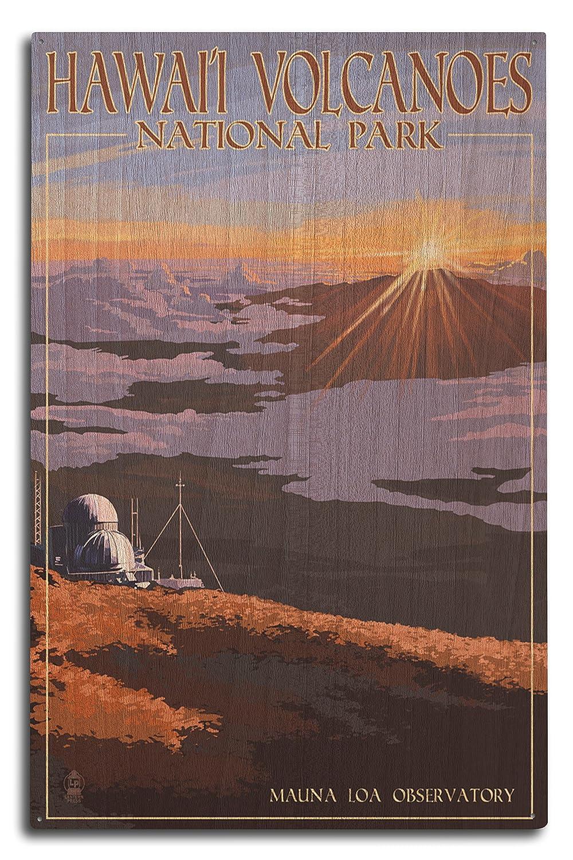 【2018?新作】 Mauna Loa Observatory Observatory at Sunrise、ハワイ火山国立公園 10 Sign Canvas Tote Bag LANT-43223-TT B07366ZL6C 10 x 15 Wood Sign 10 x 15 Wood Sign, クレシ:b5d7cd3f --- arianechie.dominiotemporario.com